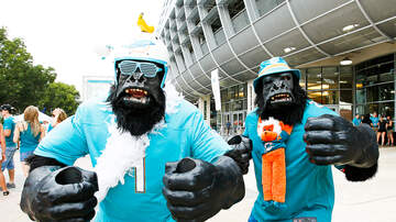 The Morning Rush - Miami Dolphins & Others In Preseason Action