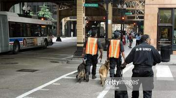 Sonya Blakey - No more security dogs on train platforms in Chicago