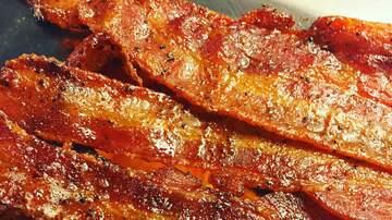 Tony Mott - Get Paid $1000 to Eat Bacon