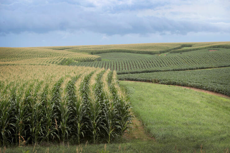 Iowa's Agricultural Economy Under Threat From Trade War With China