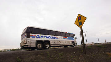 Bill Reed - Greyhound Bus Driver Quits in Mid-Trip!