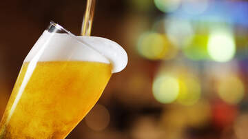 The Boxer Show - Randoms-Top US Cities for Beer Lovers, Want to be Happier-Try the following