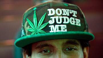Honey German - Manhattan Seals Criminals Records Of Misdemeanor Weed Charges
