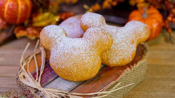 Entertainment News - Where To Grab Pumpkin Spice Beignets In Disney World