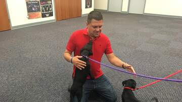 Steve Allan Pet of the Week - Meet My Pets Of The Week, Shelly And Seth!