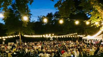 The Afternoon News with Kitty O'Neal - Enjoy an Evening Under the Stars at Carmichael Dinner in the Park