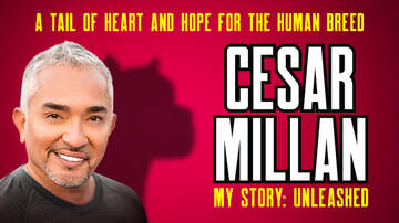 Buzzing Vegas - Cesar Millan My Story: Unleashed at MGM Grand