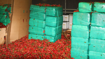 National News - Nearly 4 Tons of Weed Discovered in Shipment of Jalapeños
