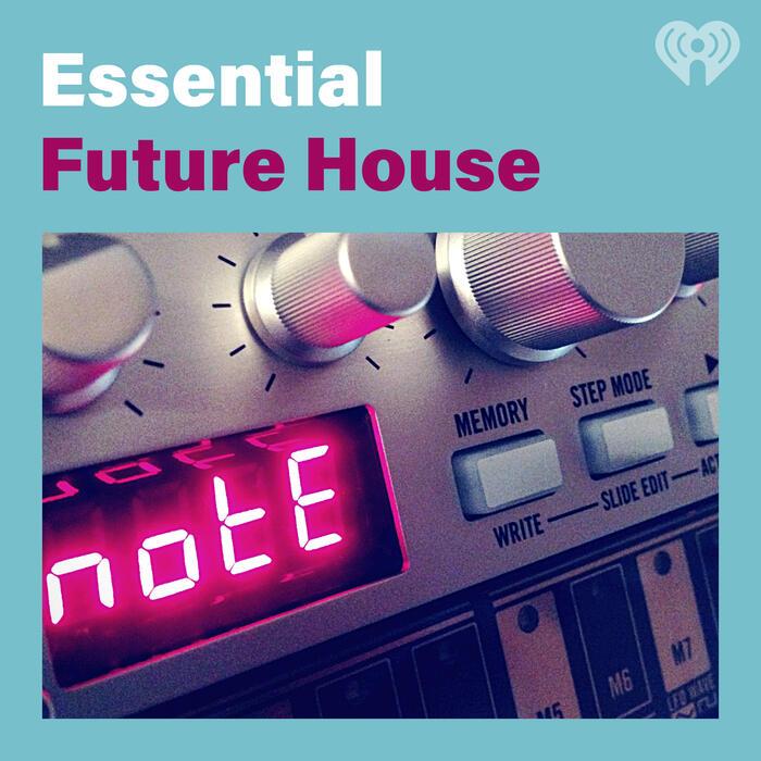 Essential Future House