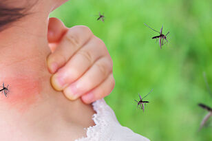 Onondaga County Dealing With Triple E And West Nile