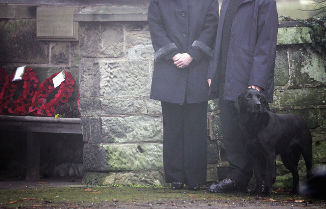 A Loyal dog Passes Away Minutes After his Owner Passes