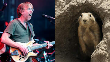 Rock News - Phish Phans Barred From Camping Due To Prairie Dog Plague In Colorado