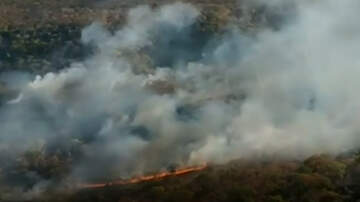 National News - Amazon Rainforest Fires Burning At Record Rate