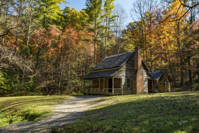 The Henry Whitehead homestead located in Cades Cove in the Great Smoky Mountains National Park is surrounded by colorful fall foliage.