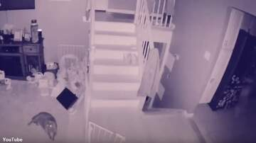 Coast to Coast AM with George Noory - Watch: Ghost Child Filmed by Home Security System?