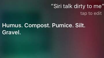 Glenn Hamilton & Amy Warner - Hilarious Siri Responses When Asked Dumb Questions