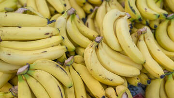 Anthony Moore - What did Safeway Employees find in Boxes of Bananas???