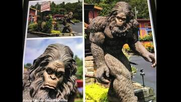 Coast to Coast AM with George Noory - 'Bigfoot Bandits' Steal Six-Foot-Tall Sasquatch Statue in North Carolina