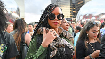 iHeartRadio Spotlight - H.E.R. Wore A Live Snake Around Her Neck at The 2019 VMAs