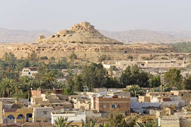 Egypt, Libyan Desert, Oasis of Siwa, elevated view
