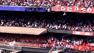 Sports Top Stories - Soccer Fan Miraculously Survives After Falling From Top Tier Of Stadium