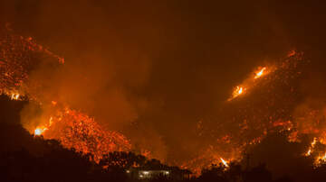 Local News - Feds Sue DWP Over 2017 Fire