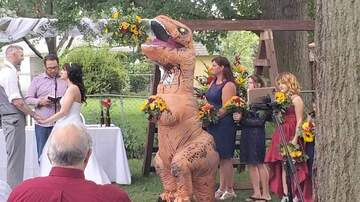 Frank Bell - Wedding Maid of Honor Dresses as T-Rex