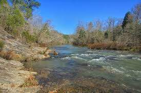 Dino - My Weekend: Our First Trip to the Cahaba River!