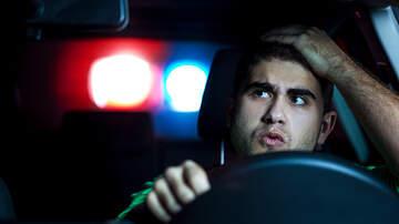 Courtney Lane - Man Spends $37k to Fight a $123 Speeding Ticket