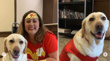 Curt Williams - Kapiolani's Dr Wendi Major & Winnie Are EmBARKing On A New Adventure