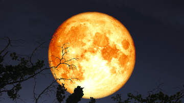 Josh and Ariel in the Morning - Things You Need To Know About This Year's Harvest Moon