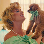 "Katy Perry's Adorable Puppy Nugget Stars In ""Small Talk"" Music Video"