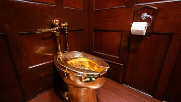 Weird, Odd and Bizarre News - Solid Gold Toilet Worth $6 Million Stolen From Palace in United Kingdom