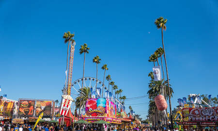 National News - California Man Made Fake Threats To Avoid Going to County Fair With Parents