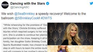 Bree - Dancing With the Stars NEWS