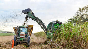 Local News - State Asks For Safety On Roads During Sugarcane Harvest