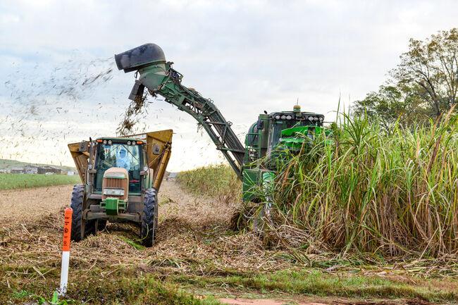 State Asks For Safety On Roads During Sugarcane Harvest