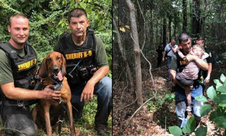 National News - K-9 Unit Tracks Down Missing Three-Year-Old Autistic Boy In Just 30 Minutes