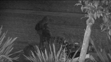 Local News - Glendale 'Comfort Women' Monument Vandalized, Again
