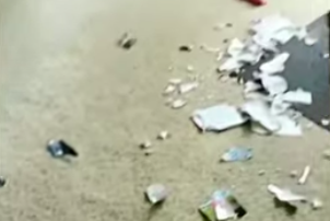 Riot Hyatt - **WATCH** Pooch Nabbed Destroying Book About...Dog Training