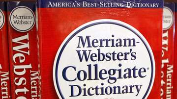 Chris Marino - Merriam-Webster Dictionary Adds Dad Joke, Vacay, Deep State, & More