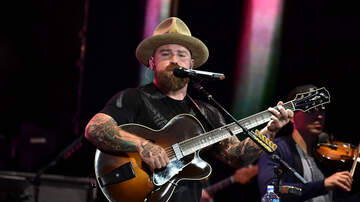 Amy Paige - This New Zac Brown Band Video Helps Animals Displaced by Hurricanes