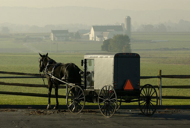 An Amish horse-drawn buggy is parked wit