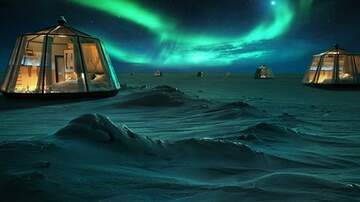 Suzette - A Luxury Hotel Is Opening In The North Pole & I Need To Book My Reservation