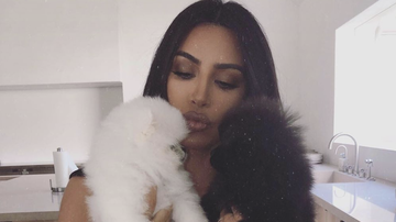 Trending - Kim Kardashian Adds Two Puppies To The Family, Asks Fans To Help Name Them