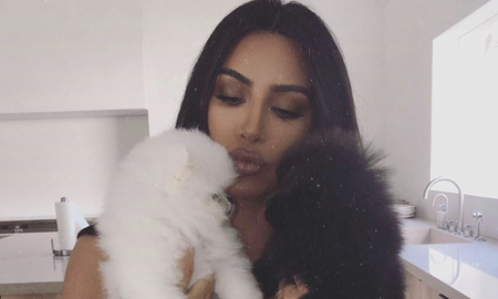 Entertainment News - Kim Kardashian Adds Two Puppies To The Family, Asks Fans To Help Name Them