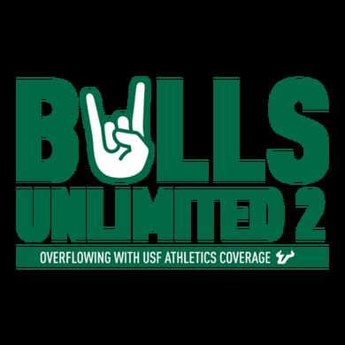 Bulls Unlimited 2 logo