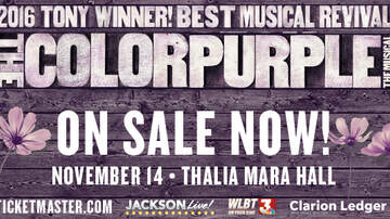 None - The Color Purple is coming to Thalia Mara Hall on November 14!