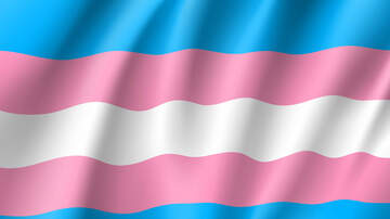 Houston - The National Transgender Visibility March Happens Saturday In Washington DC
