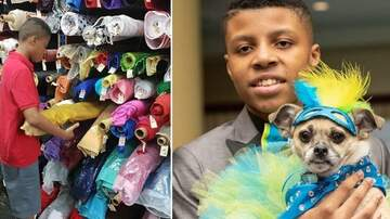 Klinger - 12-Year Old Boy Makes Bow Ties For Shelter Animals To Help Get Them Adopted